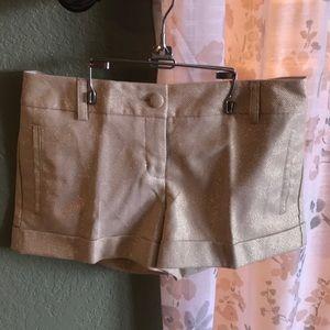 Express size 2 dress shorts. NWT